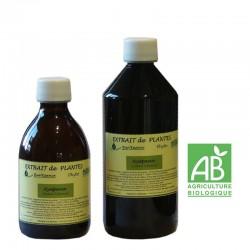 Extrait de plantes Ayapana AB