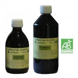 Eucalyptus 310 et 550 ml