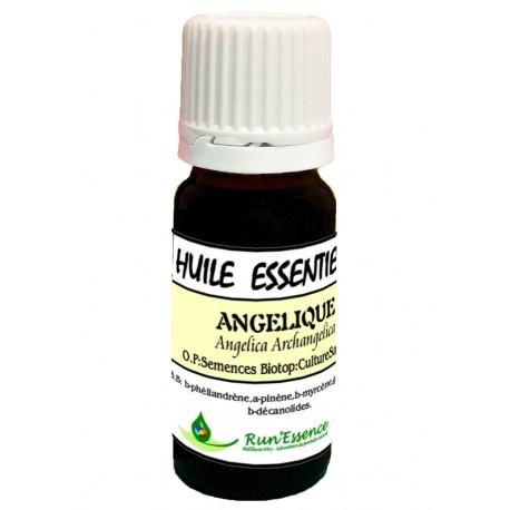Angélique 3ml - Angelica archangelica