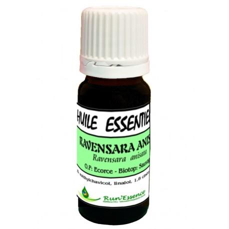 Ravensara Anisata (écorce) 10ml - Ravensara anisata
