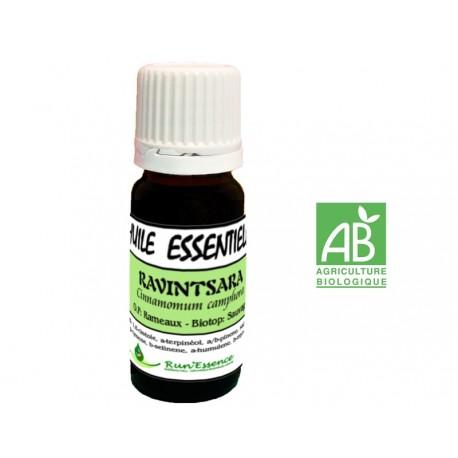 Ravintsara (rameaux) 10ml AB - Cinnamomum camphora