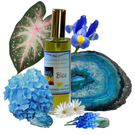 Parfums de l'Emotionnel BLEU 50 ml