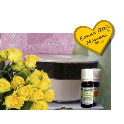 Diffuseur Oia + 2 huiles essentielles offertes - Offre fête des mères