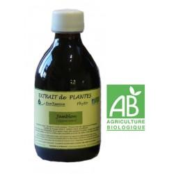 Jamblon 310 ml - Jambolona syzygium cuminii