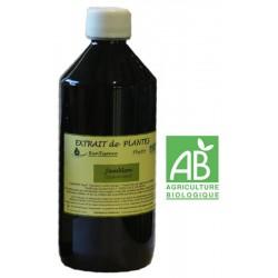 Jamblon 530 ml - Jambolona syzygium cuminii