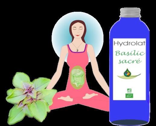 Hydrolat Basilic sacré